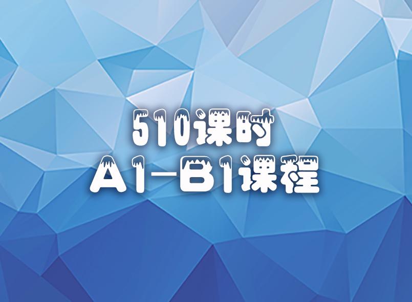 510课时A1B1意语精品课程