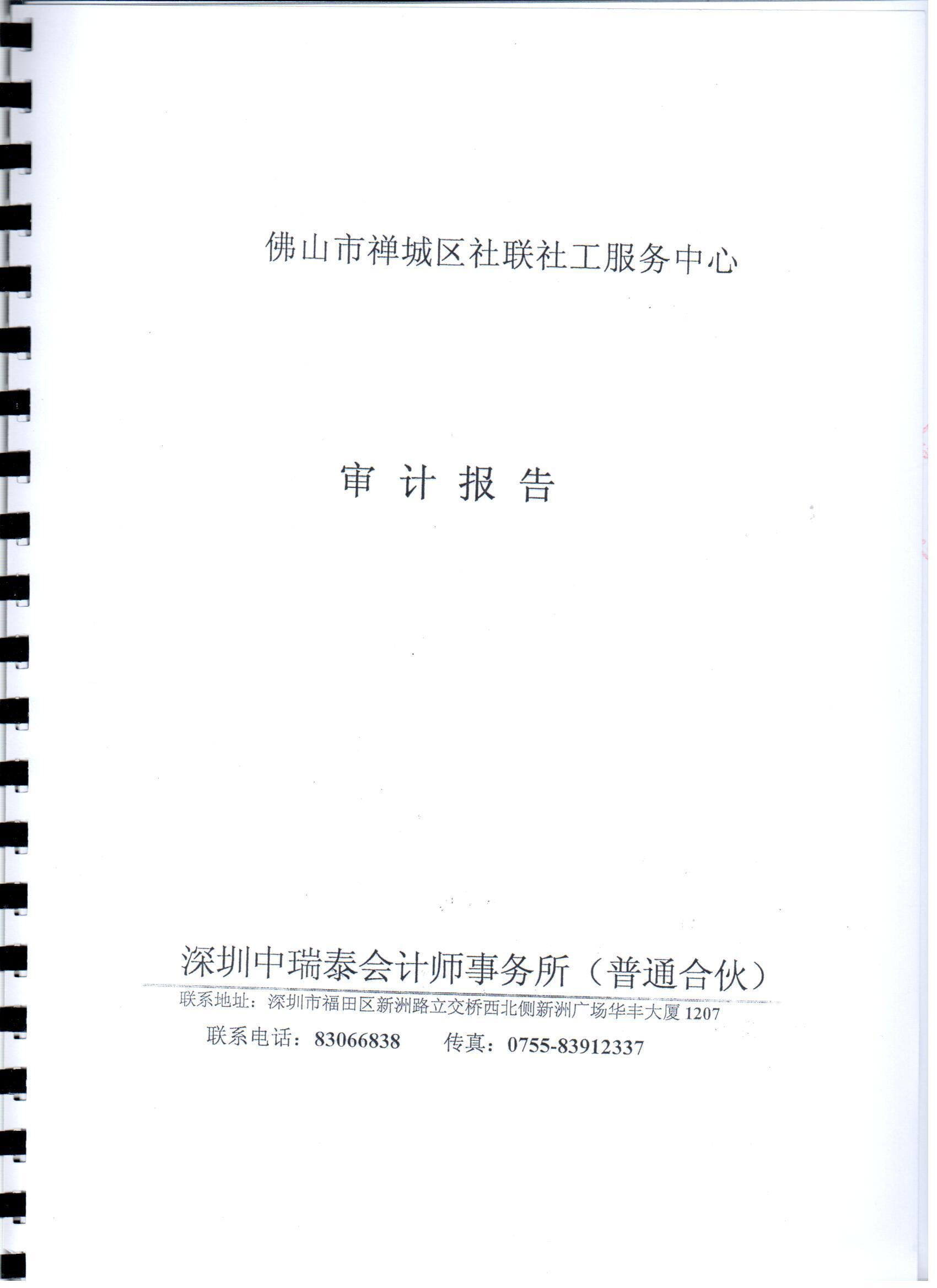 2014年财务审计报告