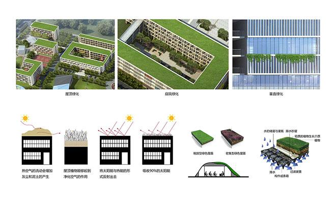 万丈国际设计∣绿色生态校园—攸州春联学校