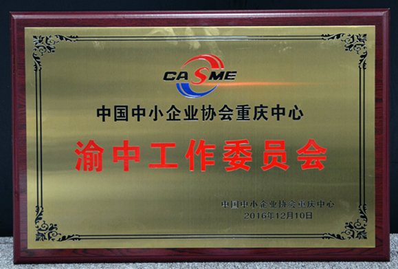 中国中小企业重庆中心渝中工作委员会