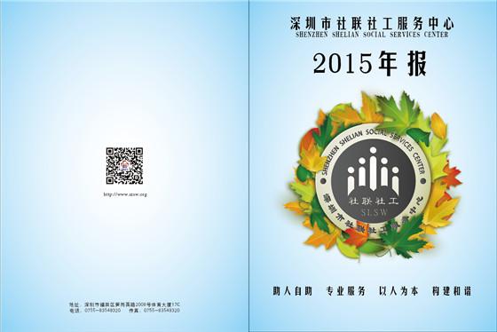 2015年年度工作报告