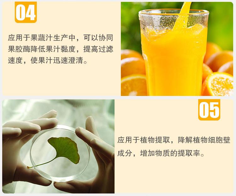 夏盛 食品级纤维素酶 CEL-01