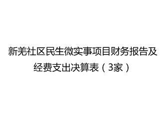 新羌社区民生微实事项目财务报告及经费支出决算表(3家)