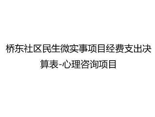 桥东社区民生微实事项目经费支出决算表-心理咨询项目