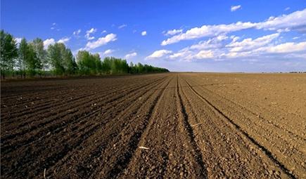 土壤酸碱度
