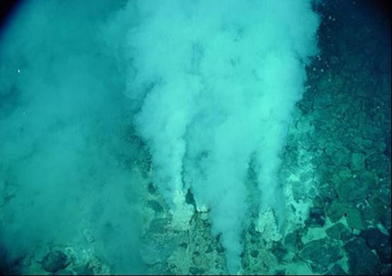 结合宏转录组和RNA-SIP分析深海热泉的活性化能自养群体
