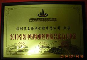 2010引领中国贝博国际在线综合实力100强