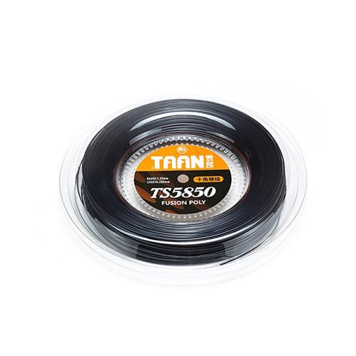 TT5850 十角硬色