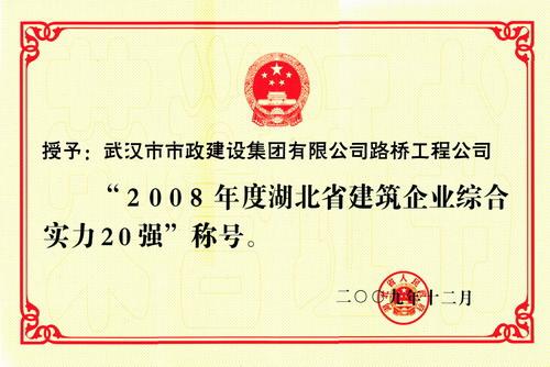 2008年度湖北省建筑企业综合实力20强