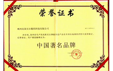 2008中国著名品牌