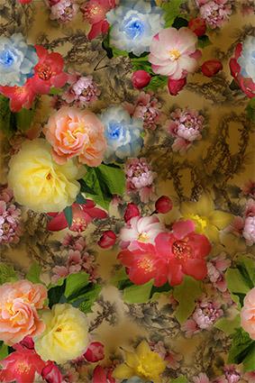 美艳炫彩柔和花卉