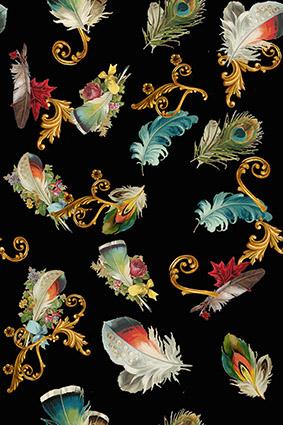 古典花边装饰羽毛