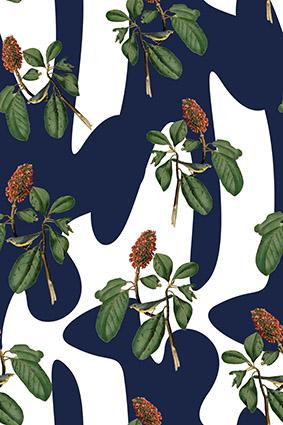 蓝色块植物手绘树叶