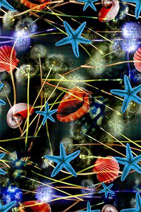 海底贝壳荧光蒲公英