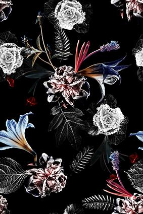 黑白手绘植物花朵