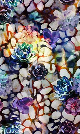 炫彩妖艳鹅卵石植物花