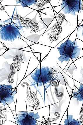 素描海马蓝色花朵