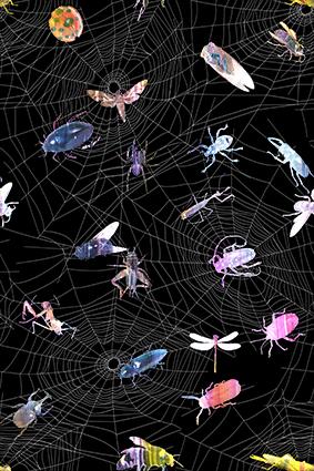 原创昆虫蜘蛛网图案