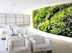绿植墙∣GREEN WALL