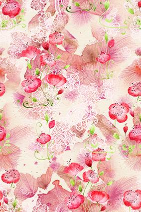 粉色花朵白色花边