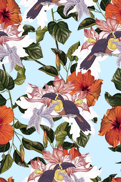 元素色彩枝叶花鸟