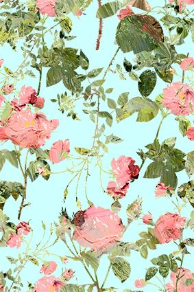 淡雅情敌元素植物花