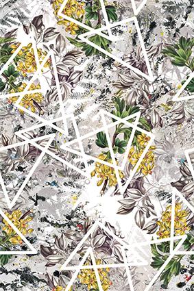 白色边框棱角花卉