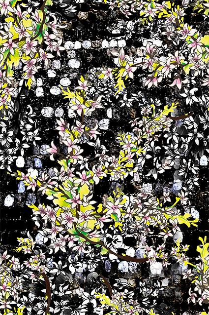 茂密繁花扶苏花卉