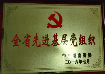 全省先進基層黨組織