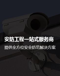 西安防盗报警系统