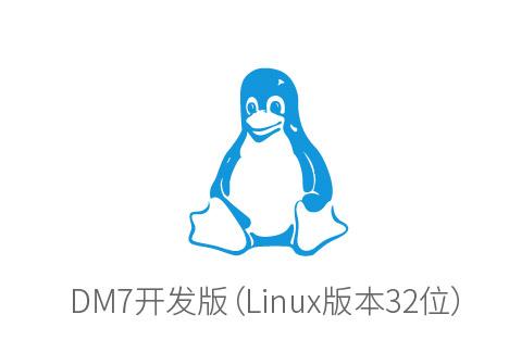 DM7开发版(linux32位)