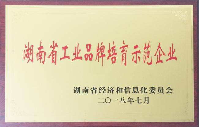 湖南省工业品牌培育示范企业