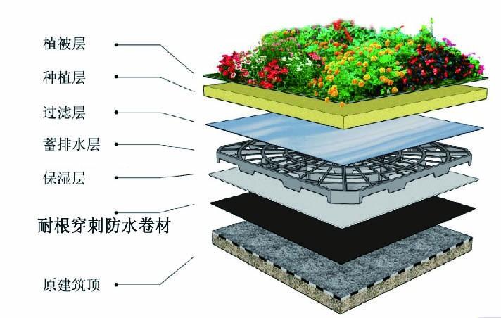 SBS(APP)改性沥青耐根穿刺防水卷材