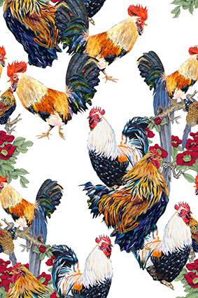 水彩公鸡动物鸡群