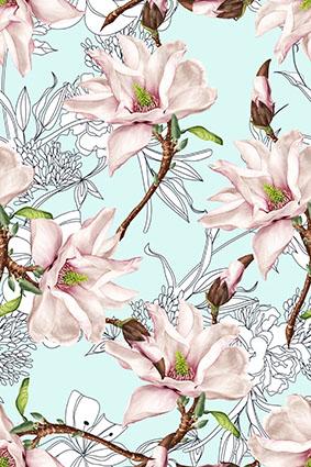 素描花朵手绘植物花