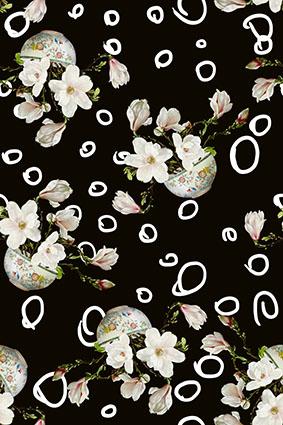 创意个性盆栽花卉