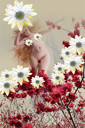 艺术幽香高雅美女花