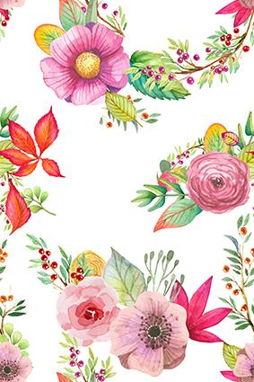 鲜艳植物娇媚花卉