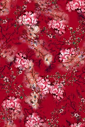 红色植物美艳花卉