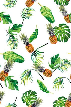 植物绿叶水果菠萝