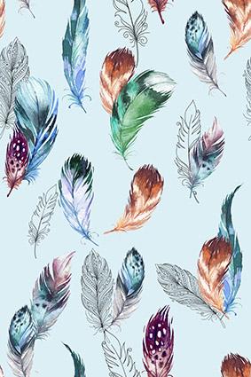 手绘素描色彩羽毛