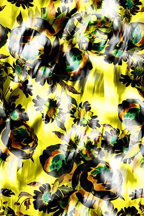 手绘植物效果花朵