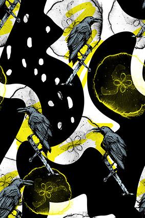 渲染乌鸦色块花鸟