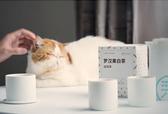 多采自然福鼎白茶寿眉龙珠可定制LOGO